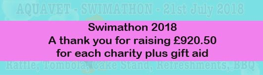 swimathon 2018 at Aquavet